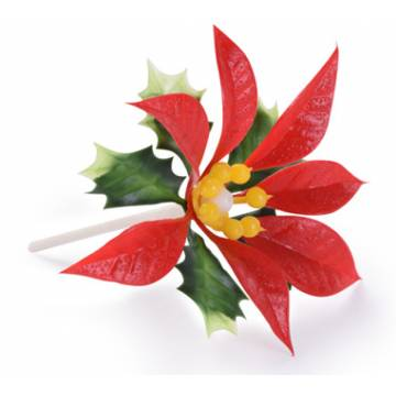 Flor De Pascua Roja (Bolsa...